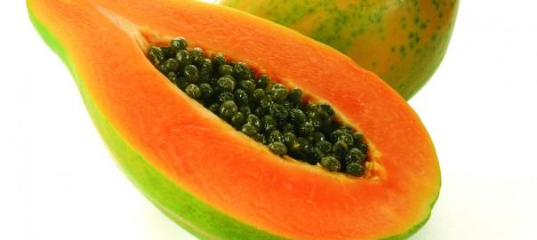 """Un cultivo transgénico """"made in Venezuela"""": la papaya (lechosa) transgénica"""