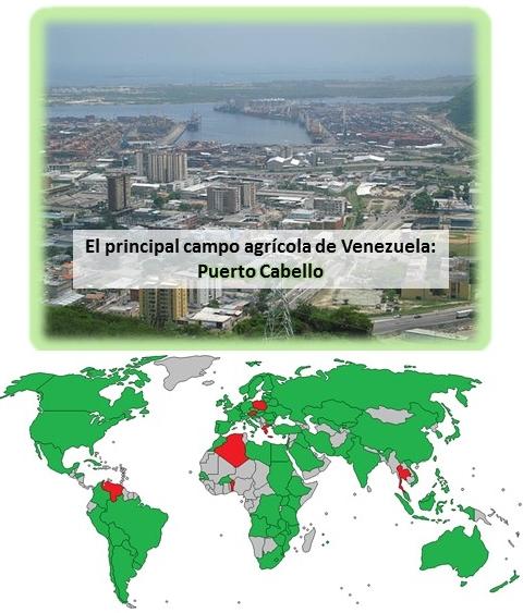 Venezuela importación transgénicos