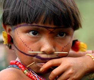 #CienciaLatina – La minería ilegal envenena a los yanomamis