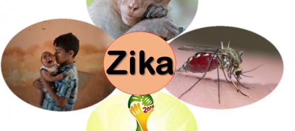 El virus Zika vino de gol