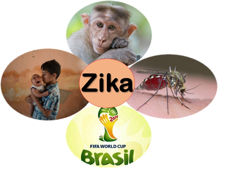 zika felix moronta