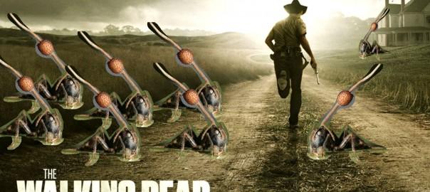 Los zombies sí existen